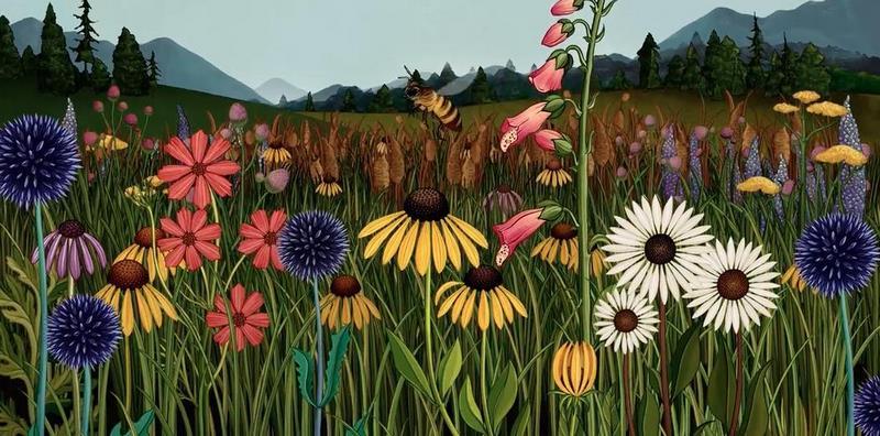 """Botanical animation """"Story of Flowers"""" Azuma Makoto, Katie Scott"""